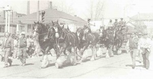 YEAR UNKNOWN Clydesdales at the St. Pats Parade Photo (2)